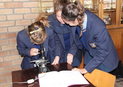 Lewenwetenskap klas (1)
